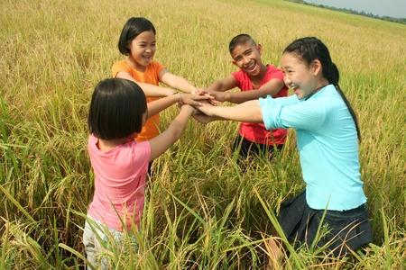 Kinderen opknoping in de rijst veld