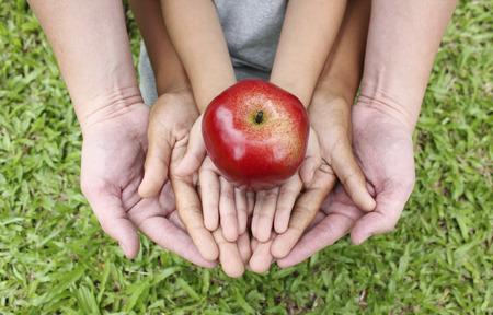 大人の手の上に赤いリンゴと子供手を繋いでいます。 写真素材 - 52379819