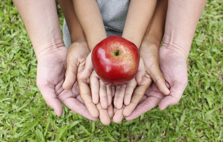 join hands: Adult hands holding kid hands with red apple on top