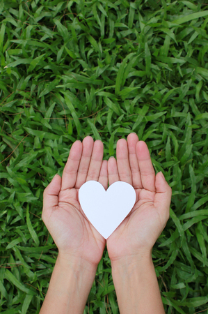 hands holding heart: Two hands holding white heart with green grass background.