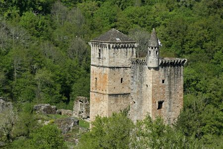 mediaval: mediaval castle in forest france Stock Photo