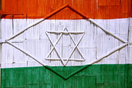 indian village: Indian flag painted on gate with lotus symbol in Hampi, south india Stock Photo