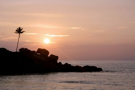 rocks, palm tree and beach sunset in Kerala, India photo