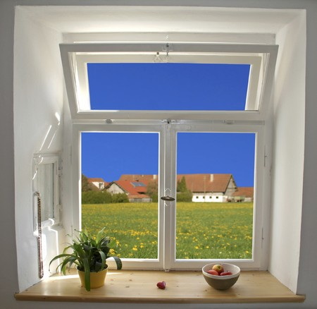 sill: white wooden windows pane with apples and plant with outside view Stock Photo