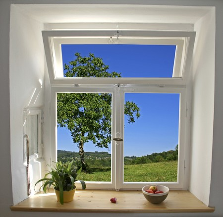 pane: white wooden windows pane with apples and plant with outside view of tree and field