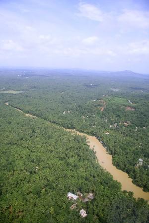 rio amazonas: Vista a�rea del r�o barroso y cocoteros en el sur de India