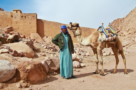 sinai: EGYPT - FEBRUARY 5: Camel guide climbing to Mount Sinai on February 5, 2011 in St Catherine Editorial