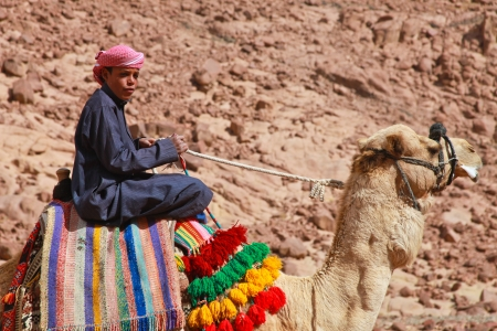 EGYPT - FEBRUARY 5: Camel guide climbing to Mount Sinai on February 5, 2011 in St Catherine Editöryel