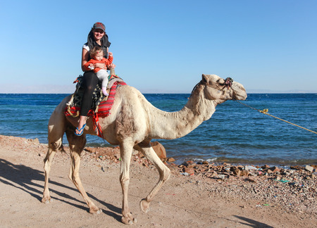 rely: DAHAB, EGYPT - JANUARY 30, 2011: Female tourist with kid rides a  camel on beach during safari. Local bedouins rely on tourism to make a living in the harsh desert. Editorial