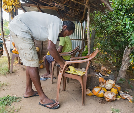 unique characteristics: ELLA, SRI LANKA - MARCH 3, 2014: Local man cutting pineapple on chair for passing tourists on street. It is common to have street sellers cut open and slice the pineapple.