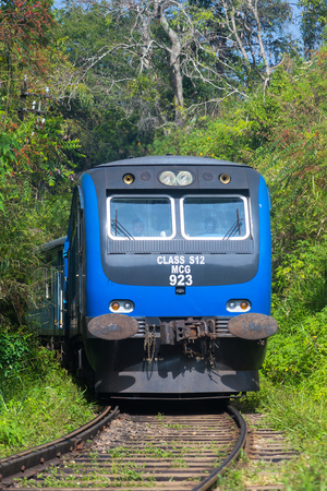 ella: ELLA, SRI LANKA - MARCH 2, 2014: Train on railway in forest. Trains go to Colombo and Kandy from Ella.