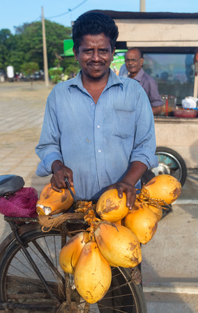 hot climate: GALLE, SRI LANKA - MARCH 5, 2014: Local man selling fresh coconuts on his bike. Fresh coconuts contain milk which is a great drink for the hot climate. Editorial