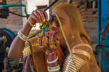 nosering: GODWAR REGION, INDIA - 14 FEBRUARY 2015: Young Indian woman wears saree and traditional arm bracelets decorated in jewelry has fun with food.