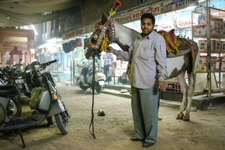 bridegrooms: JODHPUR, INDIA - 07 FEBRUARY 2015: Horse trainer standing in street holds horse decorated in traditional Indian style before taking it to wedding. The horse is used in bride-grooms wedding procession.
