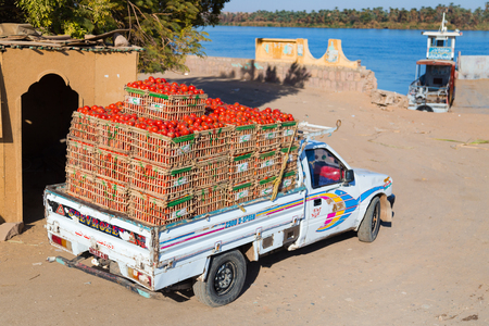 pick up truck: ASWAN, EGYPT - FEBRUARY 9, 2016: Pick up truck transporting tomatoes. Editorial