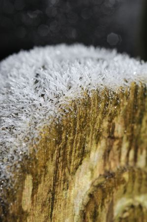 feastive: Macro shoot of frostice crystals on wood Stock Photo