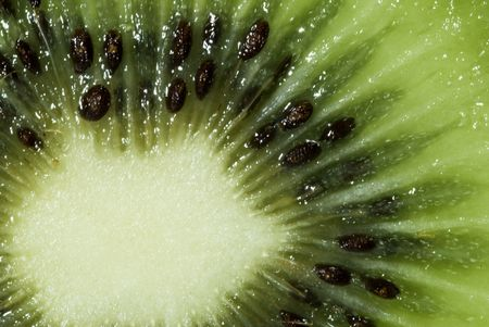 Kiwi Fruit Stock Photo - 4708333