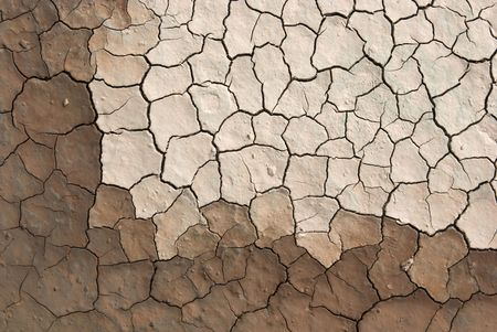 aridness: cracked ground sludge produced by the drying