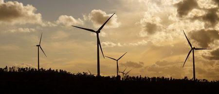 panoramic view of a group of windmills at sunset photo