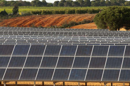 solar panels in the rural countryside photo