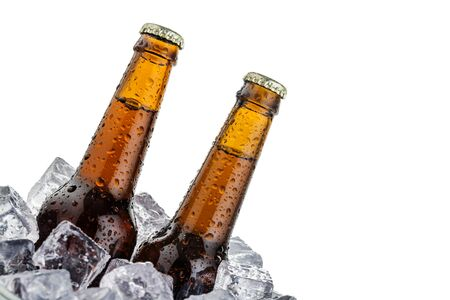 beers on ice with copyspace isolated on white background photo