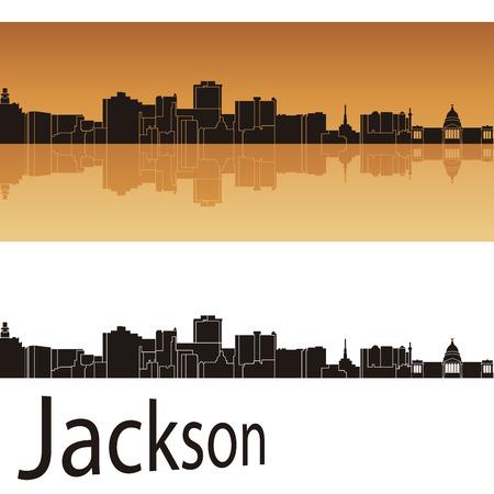 bird s house: Jackson skyline in orange background in editable vector file