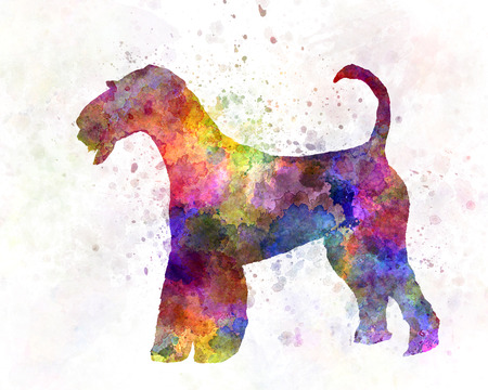 airedale terrier dog: Airedale Terrier 01 in watercolor