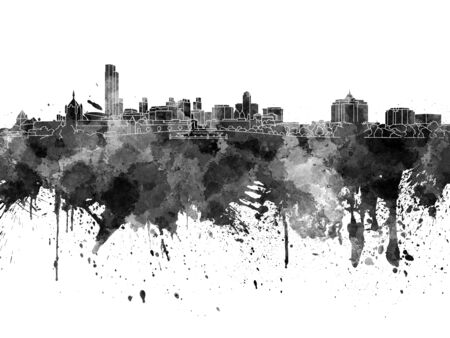 albany: Albany skyline in black watercolor on white background Stock Photo