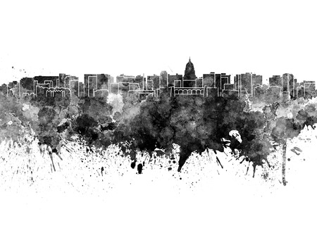 madison: Madison skyline in black watercolor on white background