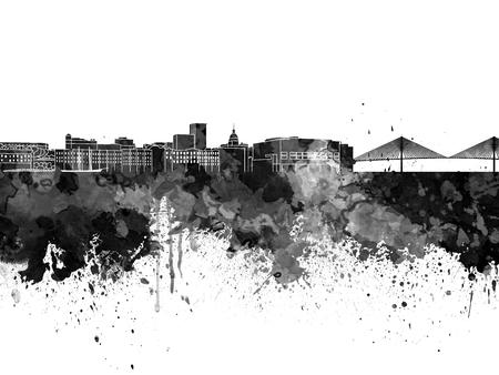 Savannah skyline in black watercolor