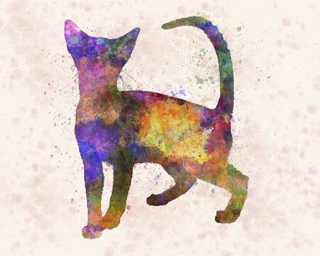 Abyssinian cat in watercolor Stock Photo