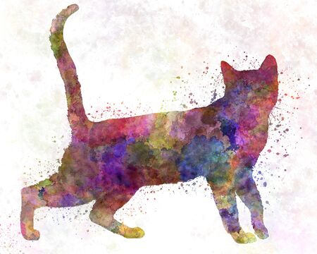 Bengal Cat in watercolor 版權商用圖片