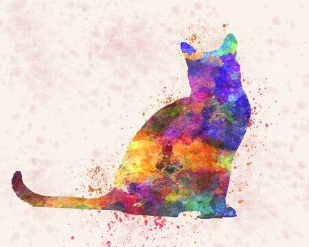 bombay cat in watercolor 版權商用圖片