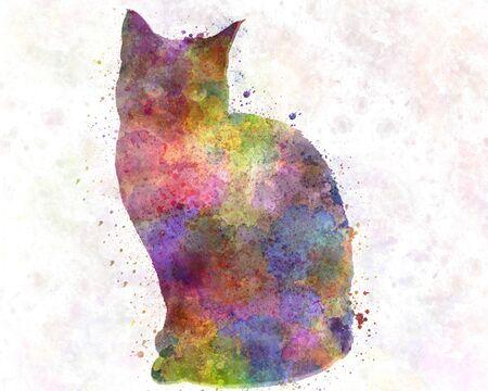 Siamese cat in watercolor 版權商用圖片