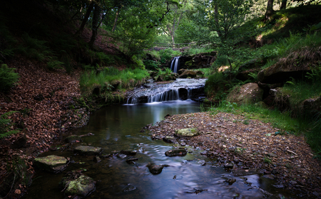 gill: Blow Gill lies at the roadside on the Osmotherley to Hawnby road, approx 2 miles from Hawnby