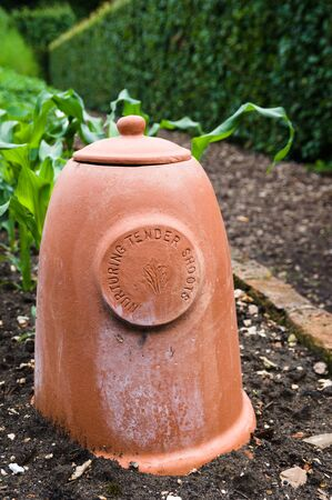 forcer: Rhubarb forcers are bell shaped pots with a lid covered opening at the top. Stock Photo