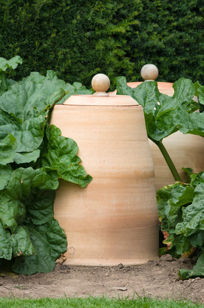 forcer: Rhubarb forcers are bell shaped pots with a lid covered opening at the top. Used to cover rhubarb to limit photosynthesis, they encourage the plant to grow early