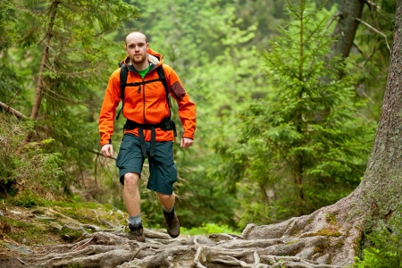 Young man in orange jacket walking hiking outdoors with backpack in green european forest Stock Photo - 13845542