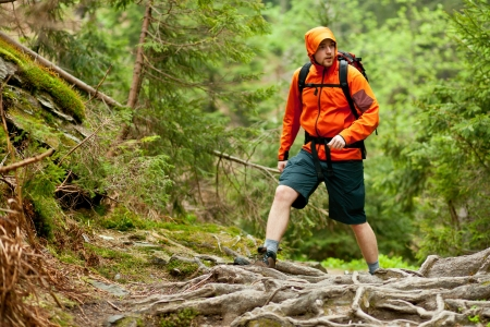 Young man in orange jacket walking hiking outdoors with backpack in green european forest Standard-Bild
