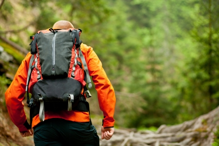 backpacking: Young man in orange jacket walking hiking outdoors with backpack in green european forest Stock Photo