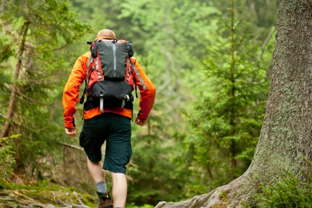 Young man in orange jacket walking hiking outdoors with backpack in green european forest Stock Photo - 13845539