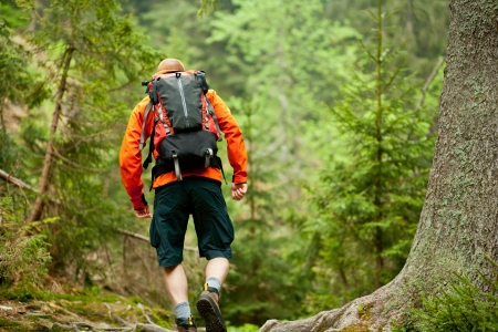 Young man in orange jacket walking hiking outdoors with backpack in green european forest Stock Photo