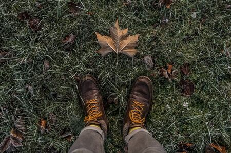 point-of-view of a man standing on the frozen grass and one frozen leaf Stock Photo