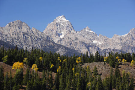 Grand Teton with a forest foreground. photo