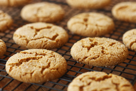 sweet sugar snap: Ginger snaps arranged on a cooking rack