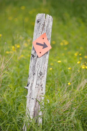 wooden trail sign: Post with Arrow