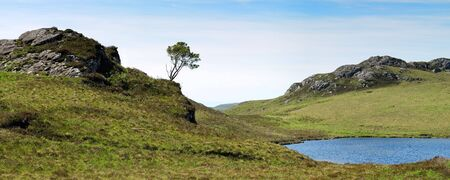 Lonely tree nearby Shieldaig in Scotland. Panorama of 4 individual photos. Stock Photo