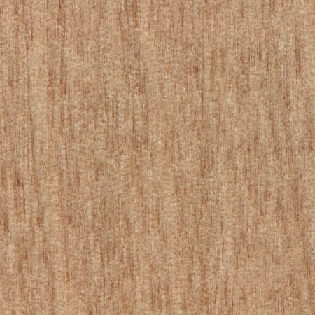 Beautiful abstract wood texture background of native timber from New Zealand shown in true size
