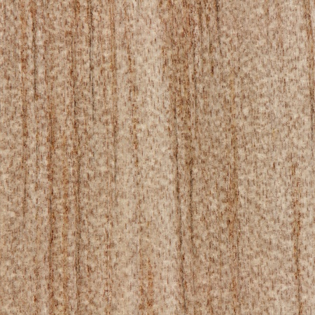 Beautiful abstract wood texture background of native timber from New Zealand shown in true size photo