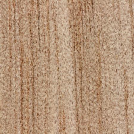 celulosa: Hermoso fondo abstracto textura de madera de madera nativa de Nueva Zelanda se muestra en tamaño real Foto de archivo